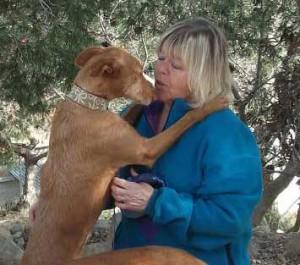 Hope-For-Podenco-Costa-Blanca-News-irene -grateful-dog